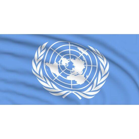 Drapel Organizația Națiunilor Unite